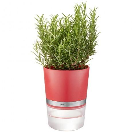 Малинено червена самополиваща се кашпа за зелени подправки или цветя GEFU от серия BOTANICO